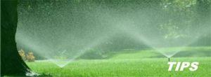 beregening sproei installatie tuin gras sproeien TIPS