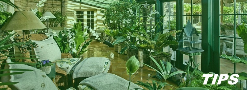 veranda verandabouw TIPS