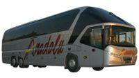 Busreizen TIPS vakantie met de bus
